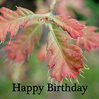 Happy Birthday Card 4 by cardsforyou