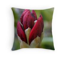 Red Emergence Throw Pillow