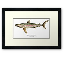 Rainbow Shark Framed Print