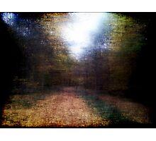 Pieces of Autumn #2 Photographic Print