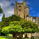 Dunkeld Cathedral II by Tom Gomez
