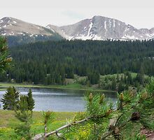 Lake in the Mountains by Lucinda Walter