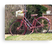 Spring Ride Canvas Print