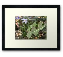 It IS a Small World After All! Framed Print