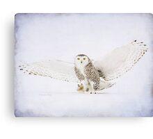 Snow-off Canvas Print