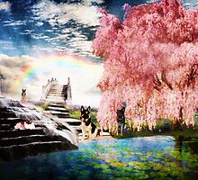 Somewhere over the Rainbow by Megan Noble