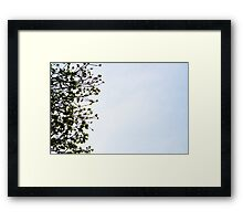 Thirds Framed Print