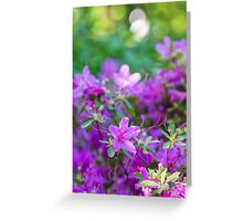 A Purple Spring Greeting Card