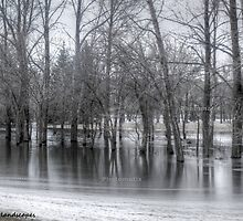 Fort Qu'appelle flooded land by Erika Price