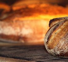 Loaves of bread in an oven.  by PhotoStock-Isra