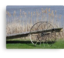 Cat Tails & Wagon Wheels Canvas Print
