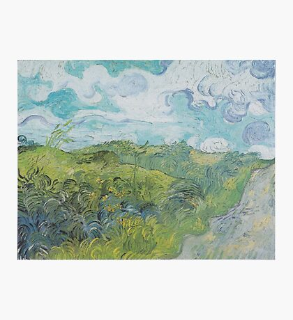 Field with Green Wheat by Vincent van Gogh Photographic Print