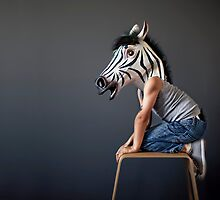 The Zebra by Naomi Frost