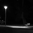 Lonely park bench by Adrian Cusmano