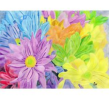 Brightly Coloured Flowers Photographic Print
