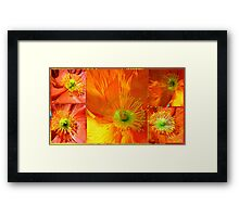 Springtime Poppies... Framed Print