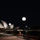 Lights, Camera, Opera! by Drew Walker