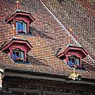 Fairytale Windows by hebrideslight