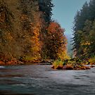 I Found The Gold by Charles & Patricia   Harkins ~ Picture Oregon