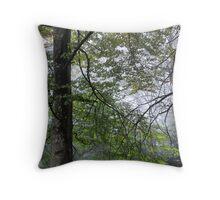 Magestic - Mt Wilson NSW Australia Throw Pillow