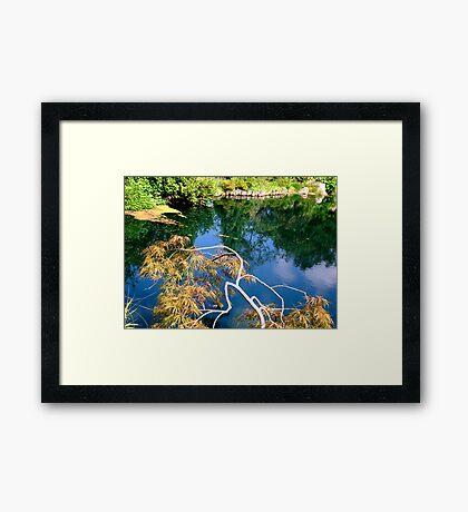 Lewis Ginter Botanical Gardens- pond  Framed Print