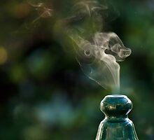 Smokin'! by Mike Freedman