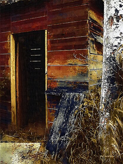 The Killing Shed by RC deWinter