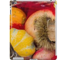 pumpkins and curly chestnut iPad Case/Skin