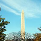 """The Washington Monument"" by mls0606"