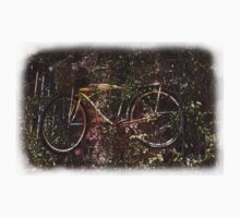 Bike in Shrub by Matt  Chambliss