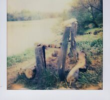 log lounge by Jill Auville