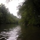 """The Chestatee River by mls0606"