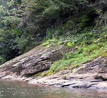 """The Chestatee River 02"" by Micah Samter"
