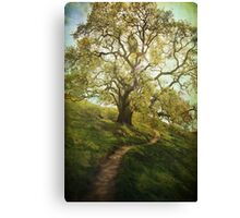 The Path to Brighter Days Canvas Print