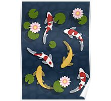 Japanese Koi Fish Pond Poster