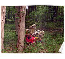 Hobby Horse in an Unlikely Place (VINTAGE 1950s WONDER ROCKING HORSE) Poster
