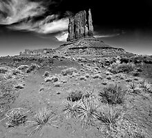 Big Sky at Monument Valley by Sue Knowles