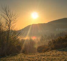 A Misty Groudle Sunrise by Sammie Caine
