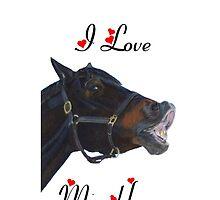 I Love My Horse! iPhone & iPod Cases by Patricia Barmatz