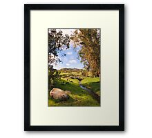 Backyard Nature Framed Print