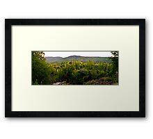 Mountain Beauty Framed Print