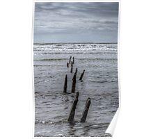 timber sea Poster