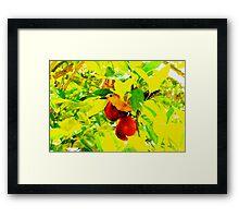 Orange lover Framed Print