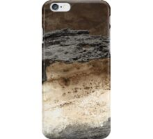 Hidden Art iPhone Case/Skin