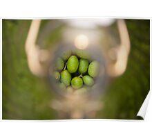 Olives in a bottle Poster