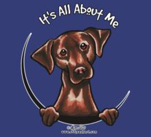 Chocolate Lab :: Its All About Me by offleashart