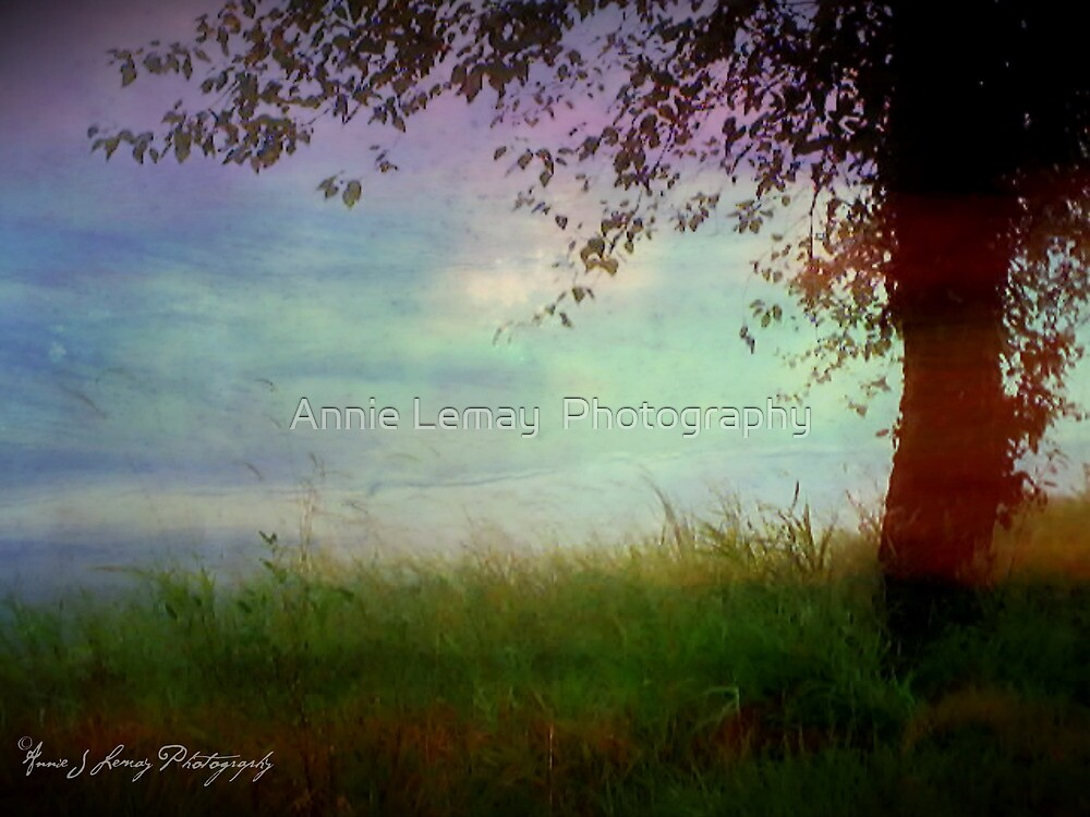 Whispering Tree by Annie Lemay  Photography