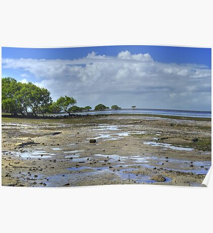 Low Tide At Sandstone Point Poster