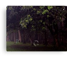 The ABC Woods... Canvas Print