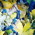 Autumn Leaves by delosreyes75